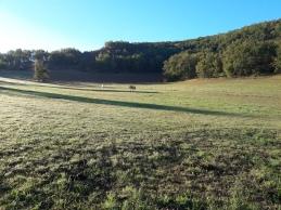 Domaine des terres blanches lot (10)