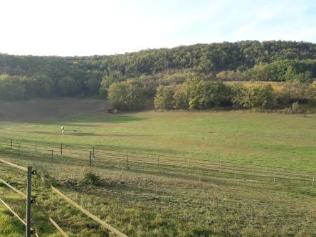 Domaine des terres blanches lot (8)